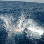Baden vom Boot mitten auf dem Meer